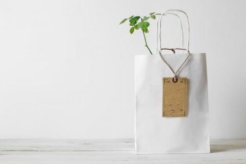 プレゼント 観葉植物 贈り物