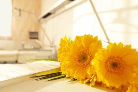 花 病院 黄色