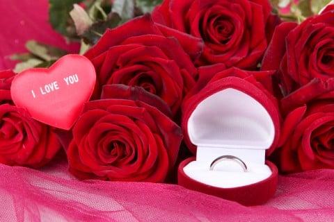 プロポーズ 花束 バラ