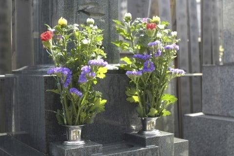 お盆 花 お墓葬儀 葬式 お墓