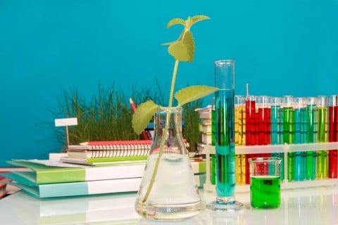 液肥 植物 研究 水耕栽培 水栽培 液体肥料