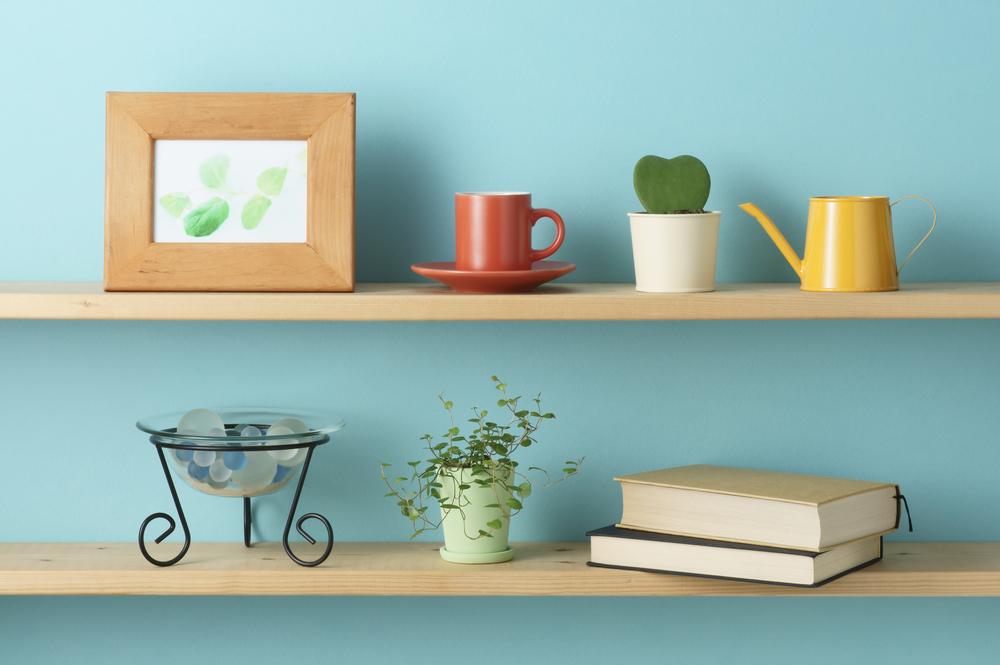 初心者にもオススメの観葉植物でインテリアされたお部屋の画像