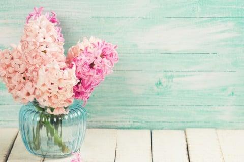 ヒヤシンス 切り花 花瓶