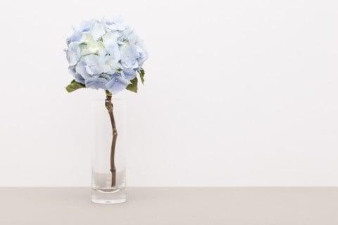 あじさい 花瓶  アジサイ 紫陽花