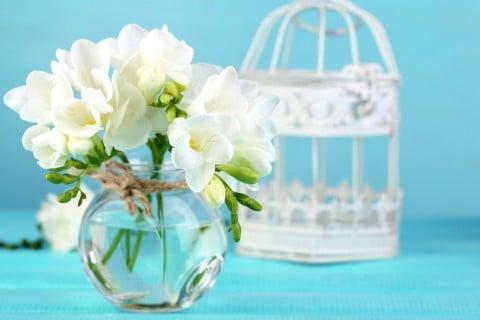 フリージア 花瓶