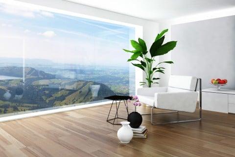 観葉植物 空気清浄効果 リビング インテリア 室内 部屋