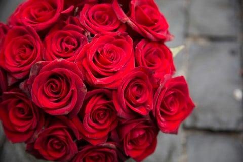 バラ 赤 花束