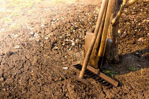 土 土壌改良 庭 DIY