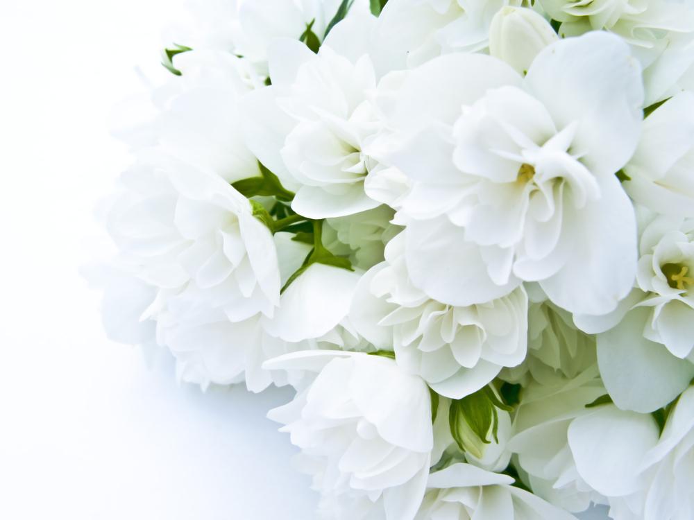 お 葬式 お花 代