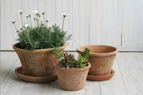 要出典 おしゃれな植木鉢1