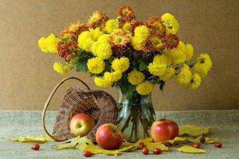 秋 花束 黄色