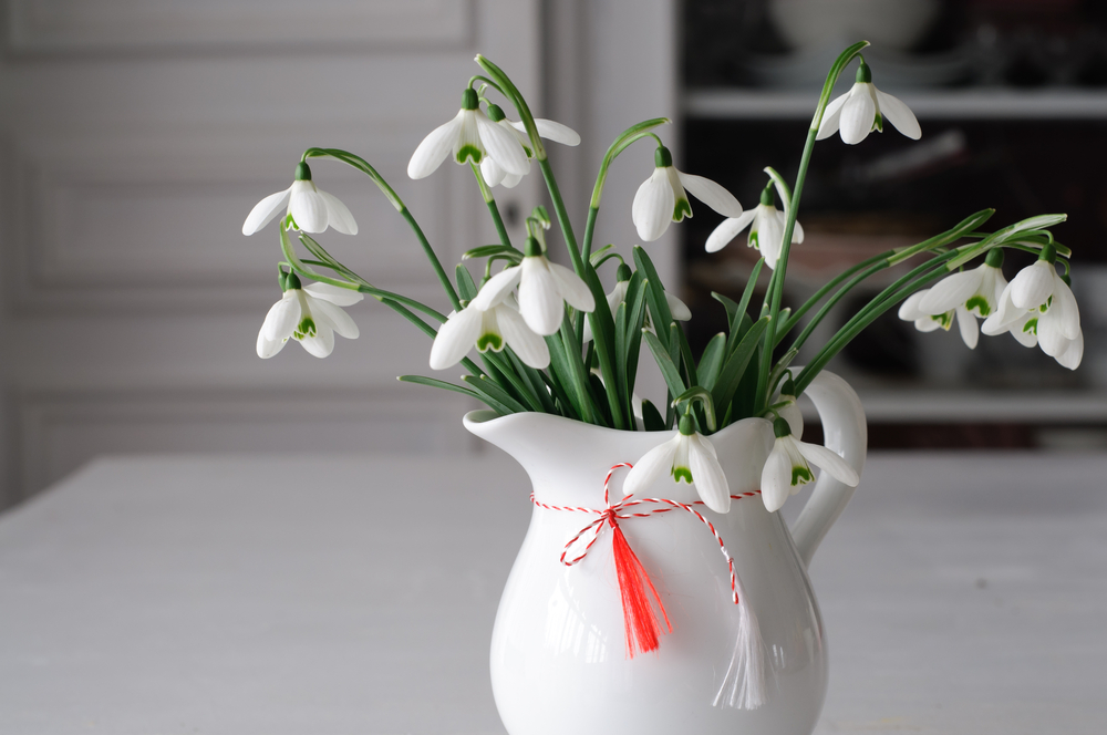 スノードロップ 花瓶