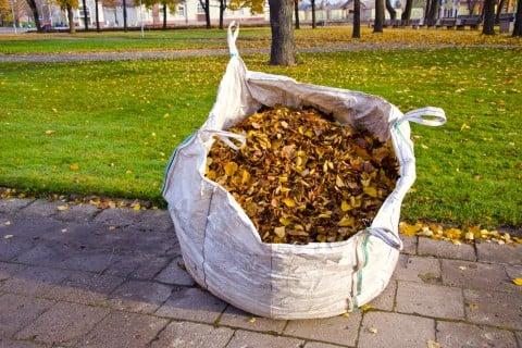 落ち葉 堆肥 腐葉土 土作り