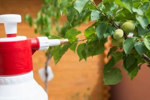水やり 肥料 防虫 薬剤 スプレー