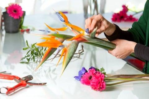 Strelitzia reginae ストレリチア 花束作り
