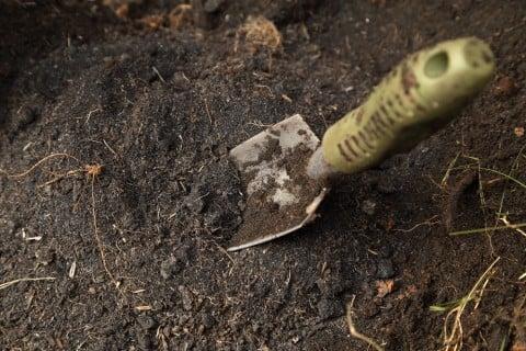 土 作り シャベル 庭 耕す