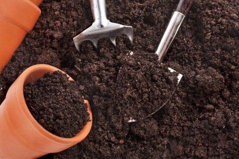 培養土 土