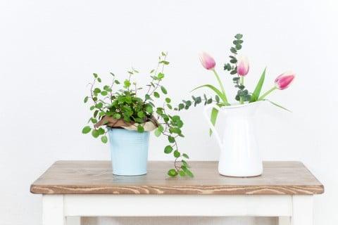 ワイヤープランツ 鉢 花瓶