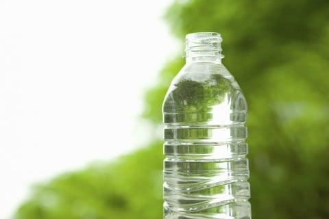 ペットボトル 水耕栽培