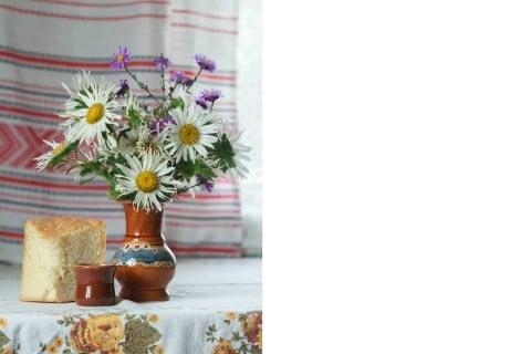 シオン 紫苑 鉢 花瓶