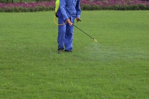 芝 芝生 ガーデニング 薬剤 肥料 散布