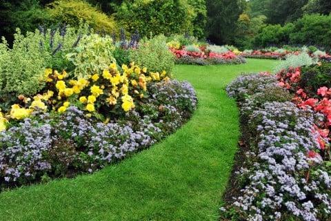 芝 芝生 ガーデニング 花 花壇 庭