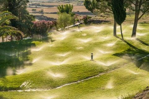 芝 芝生 ガーデニング 水やり スプリンクラー
