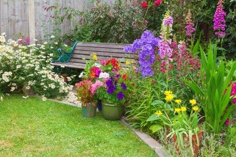 ジギタリス 花 寄せ植え 庭 花壇