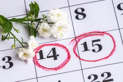 カレンダー 植物 花