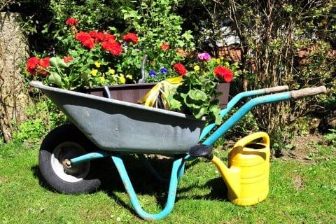 寄せ植え ガーデニング 屋外 庭 花 グッズ