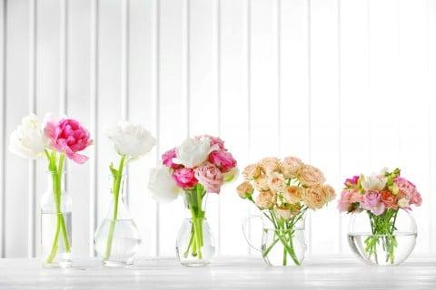水挿し 花瓶 水耕栽培 水栽培 花 切り花