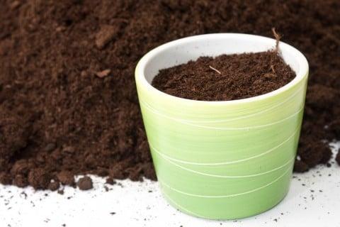 肥料 土 鉢植え 土作り