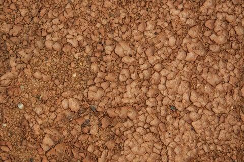 赤玉土 赤土 土作り 硬質赤玉土