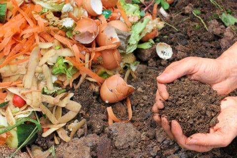 肥料 コンポスト 庭 堆肥 野菜