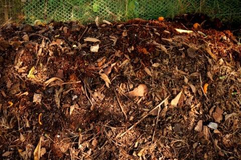 腐葉土 堆肥 枯れ葉 落ち葉