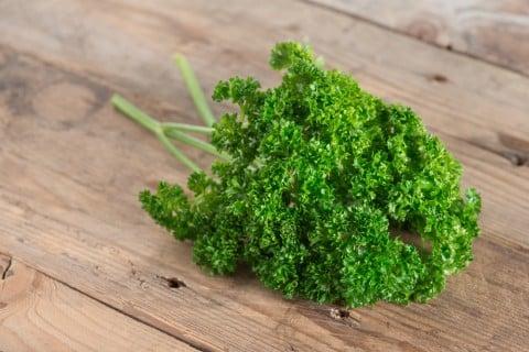 パセリ テーブル 木 葉っぱ ミドリ