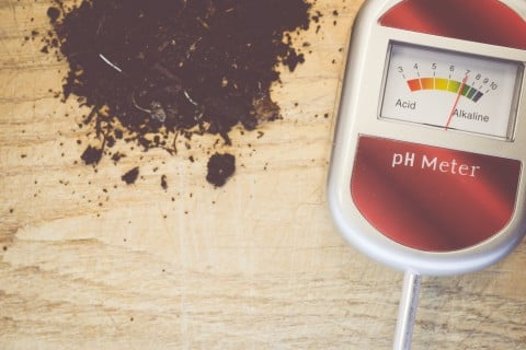 pH 酸性度合い 測定器 消毒 調節 土作り