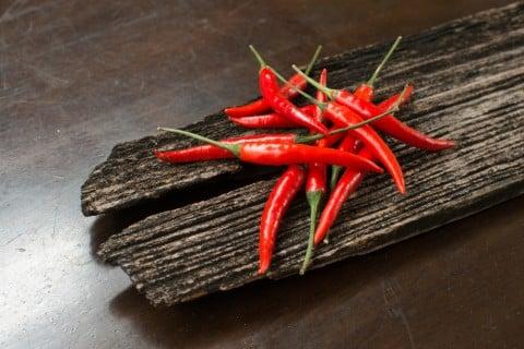唐辛子 テーブル トウガラシ 木 実 赤