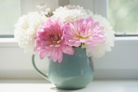 ダリア 花束 白 ピンク 花瓶 切り花