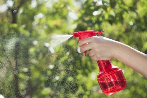 虫除け 水やり 防虫 葉水 霧吹き スプレー