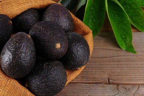 アボカド 黒 実 収穫
