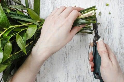 切り花 カット 茎
