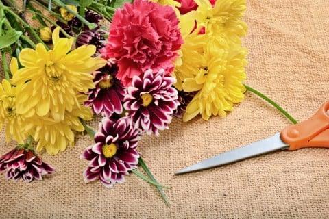 切り花 ハサミ