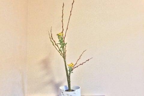 華道 生け花 (3)