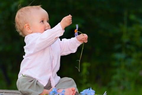 出産祝い 赤ちゃん 花 (2)