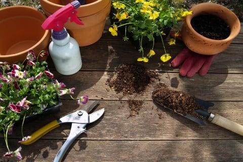 霧吹き 水やり 園芸 基本 鉢 剪定 ハサミ