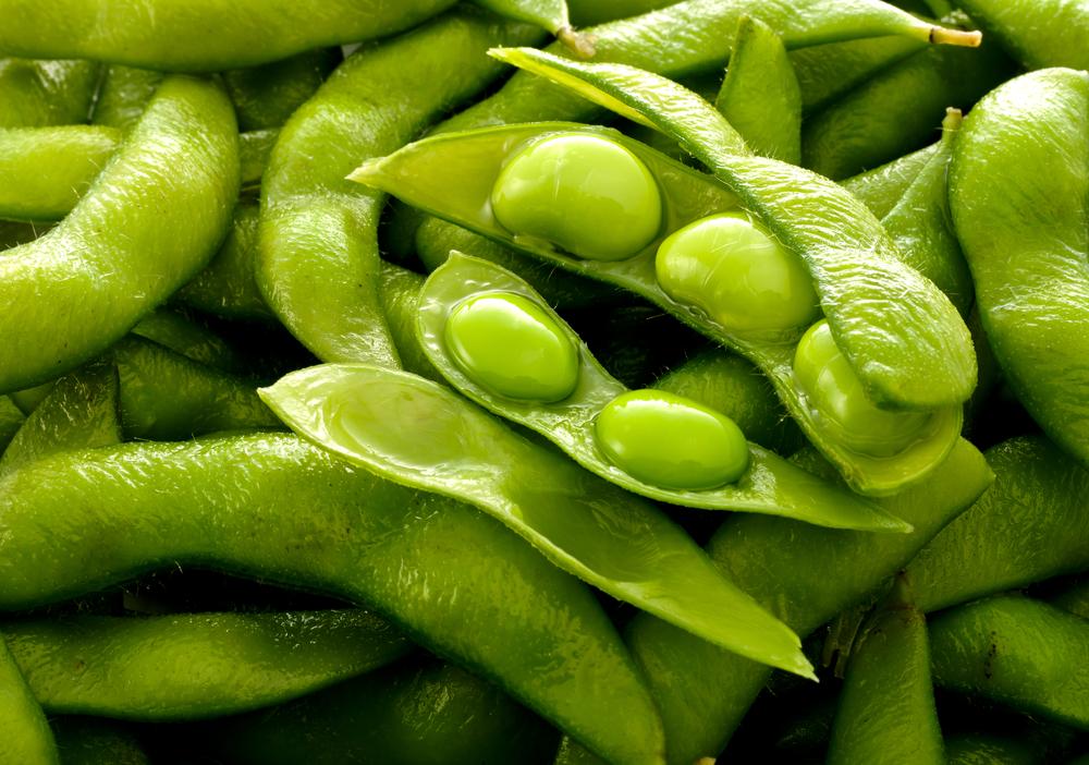 枝豆 栽培 方法