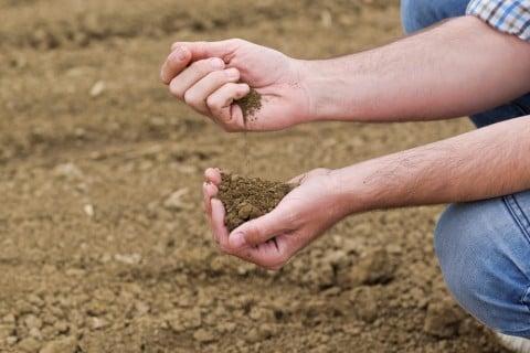 土作り 土壌改良 再生
