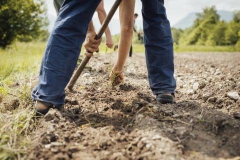 土作り 耕す 土壌改良