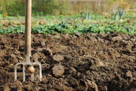 土作り 粘土質 耕す